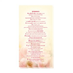 Desiderata 2 - Decoratiuni interior - Tablou canvas 50